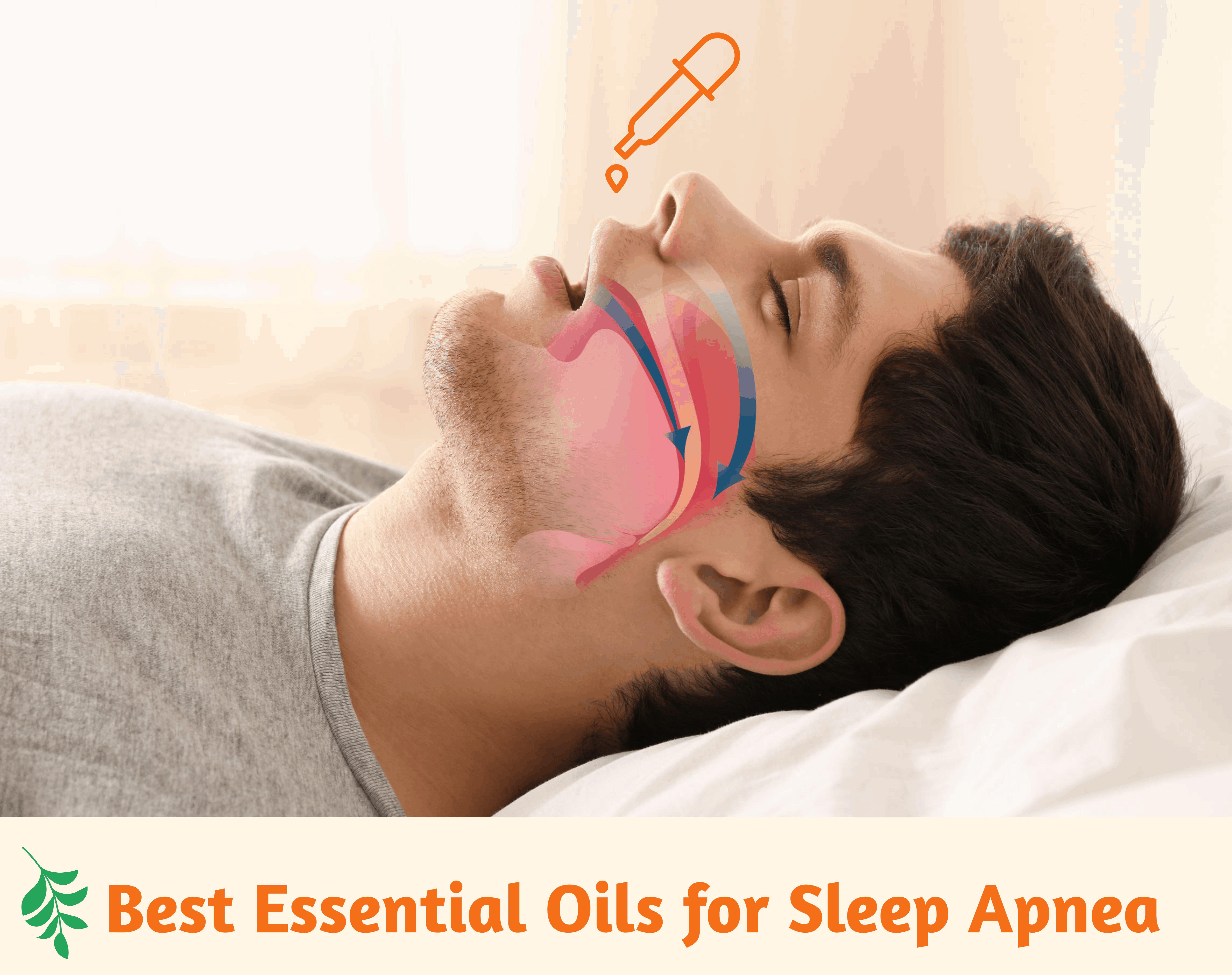 Meilleures huiles essentielles à utiliser pour le traitement de l'apnée du sommeil