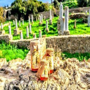 Miel de Mille-Fleurs 1Kilo – Miel de Carthage