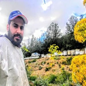 Miel de Fleurs d'Orangers 500Gram – Miel de Carthage