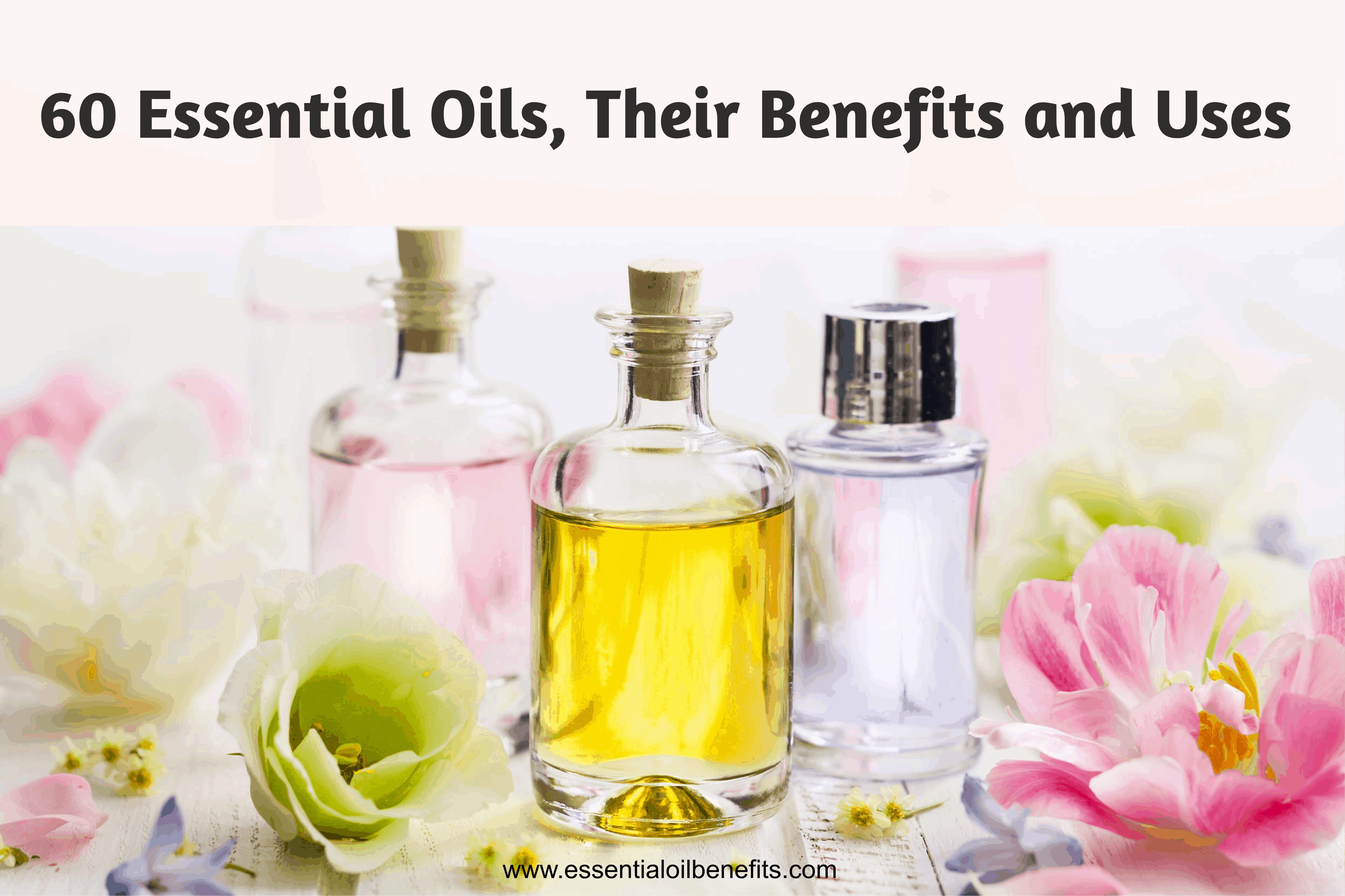 Liste des 60 huiles essentielles, leurs avantages et leurs utilisations (Guide imprimable PDF) |