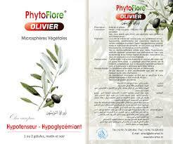 PHYTOFLORE OLIVIER B/30